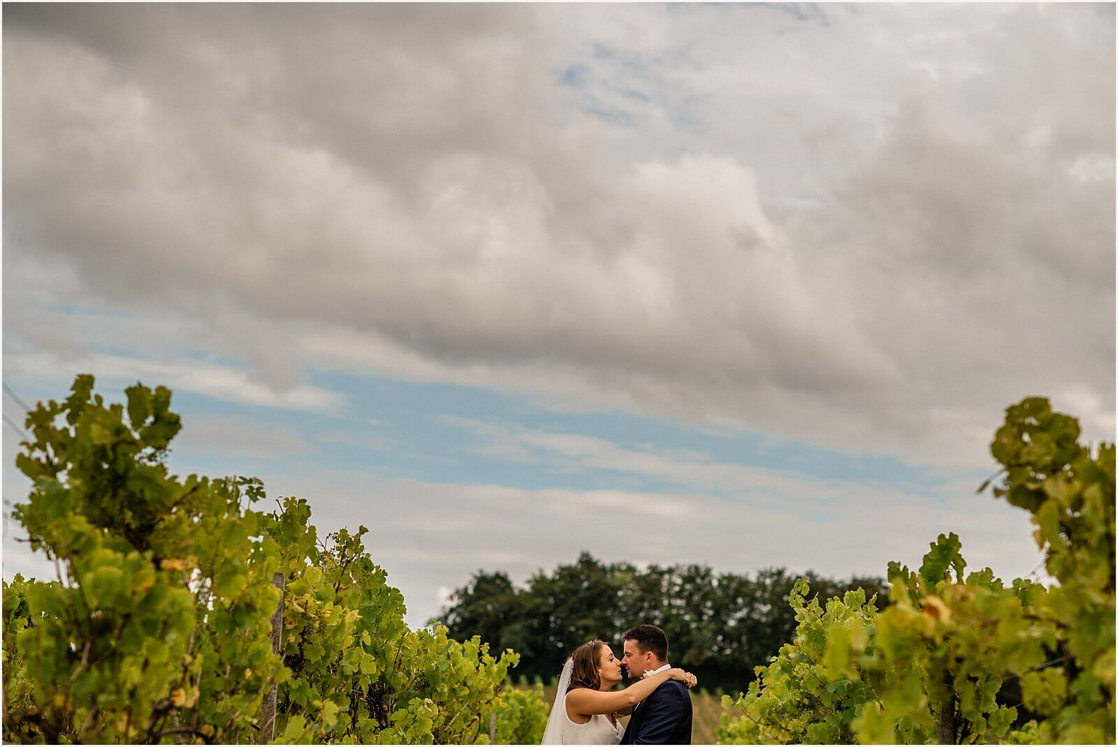 Wedding at Denbies Vineyard - charming wine estate wedding - wedding photography 49
