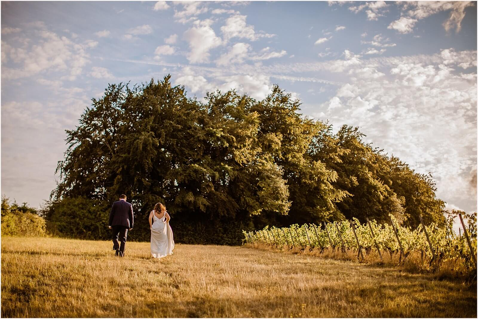 denbies wine estate wedding-1