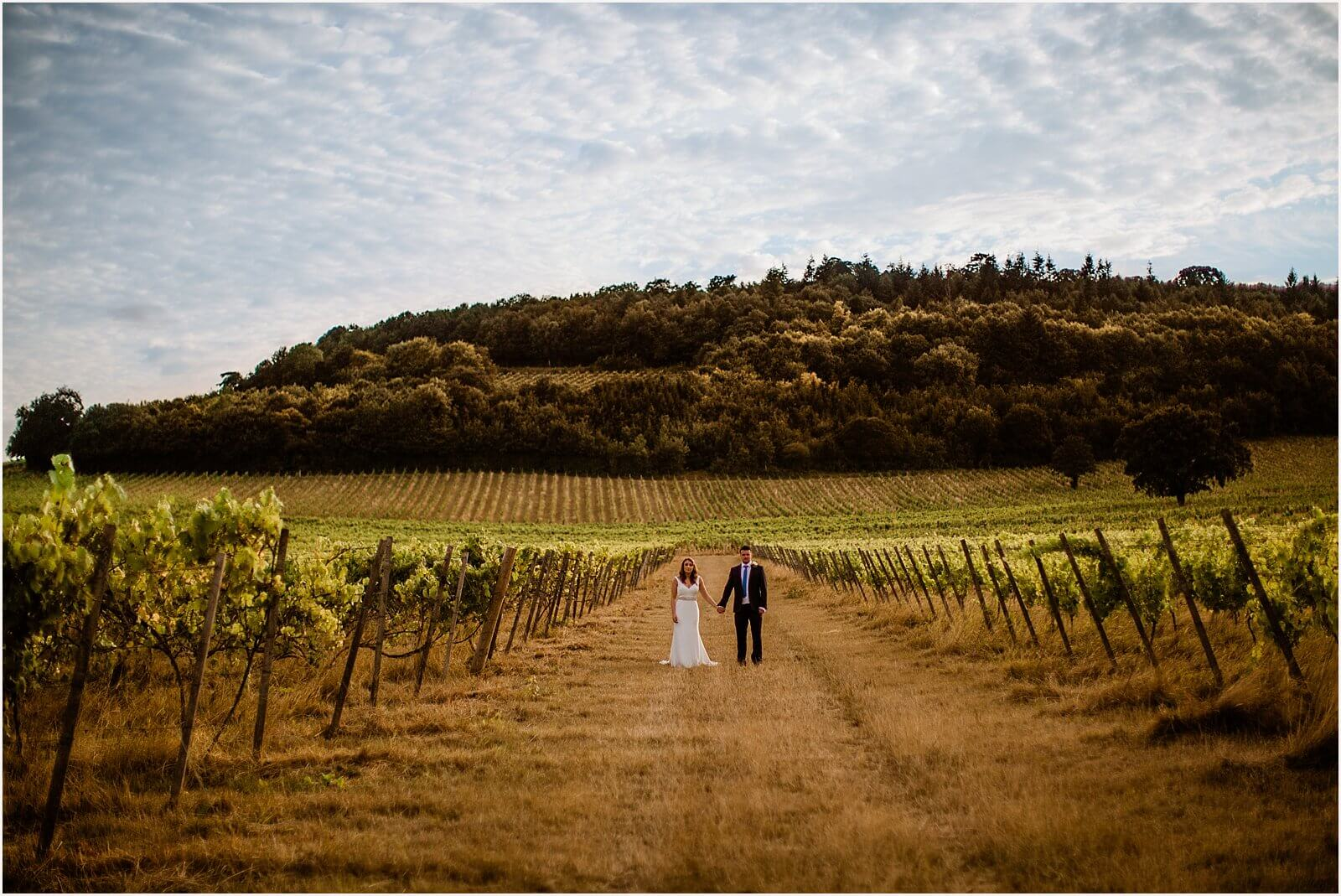 bride and groom within vineyard holding hands at a Denbies Vineyard Wedding